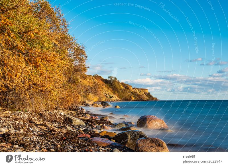 Baltic Sea coast near Klintholm Havn in Denmark Relaxation Vacation & Travel Tourism Beach Ocean Nature Landscape Water Clouds Autumn Tree Rock Coast Stone Blue