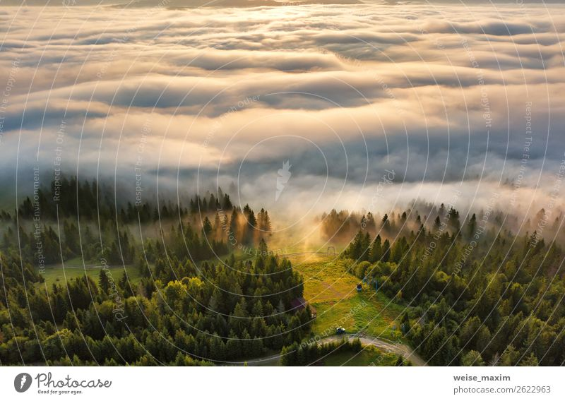 sunrise in mountains. Sea of fog behind top of the hill Vacation & Travel Tourism Summer Ocean Mountain Environment Nature Landscape Clouds Sunrise Sunset