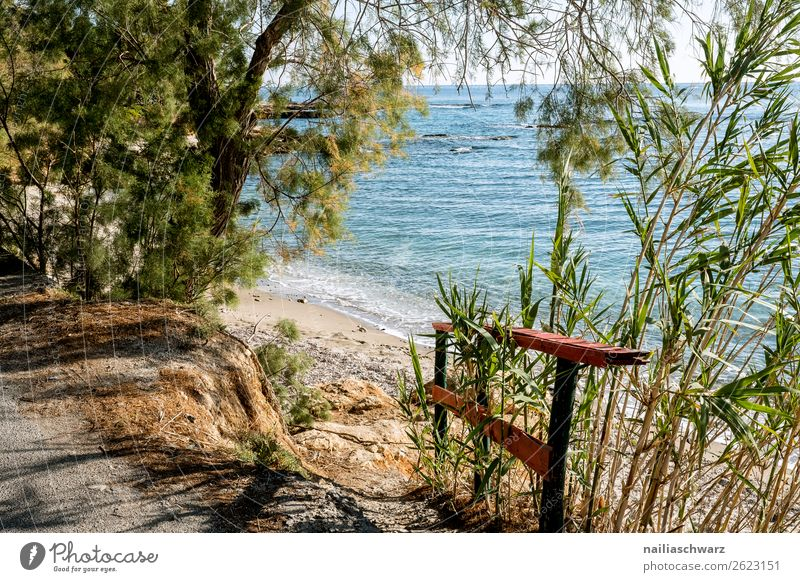 Sea view, Crete Lifestyle Vacation & Travel Tourism Trip Summer Summer vacation Environment Nature Landscape Sand Beautiful weather Plant Tree Foliage plant