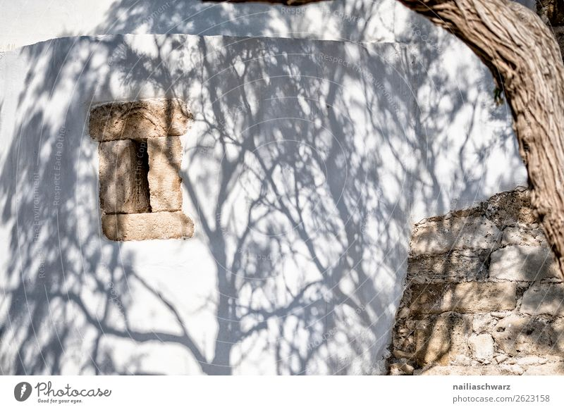 Creta in summer, shade Lifestyle Vacation & Travel Tourism Trip Summer Summer vacation Sun Nature Tree creta Greece Europe Village Small Town