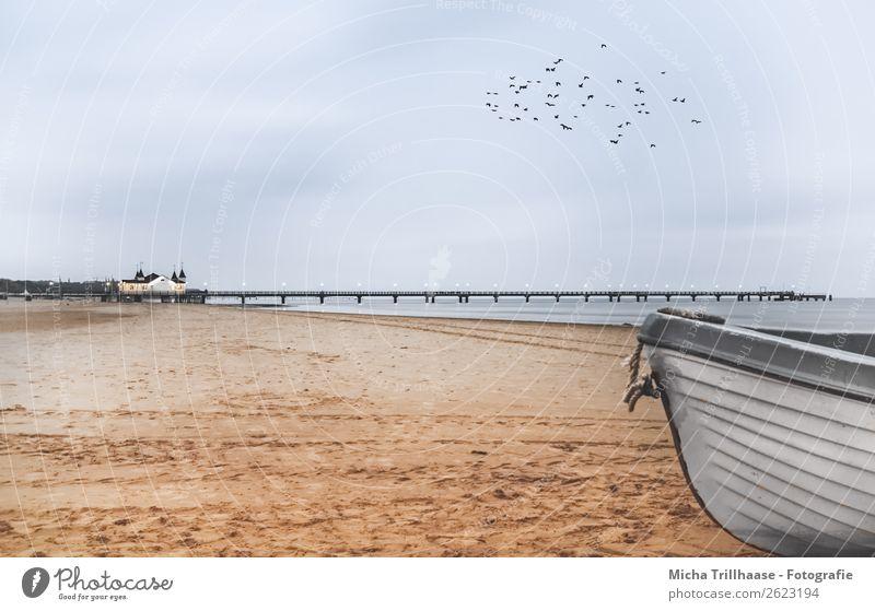 Baltic Sea beach, barge and pier Nature Landscape Sand Water Sky Clouds Sunlight Beautiful weather Ocean Bridge Relaxation Illuminate Natural Blue Orange Black