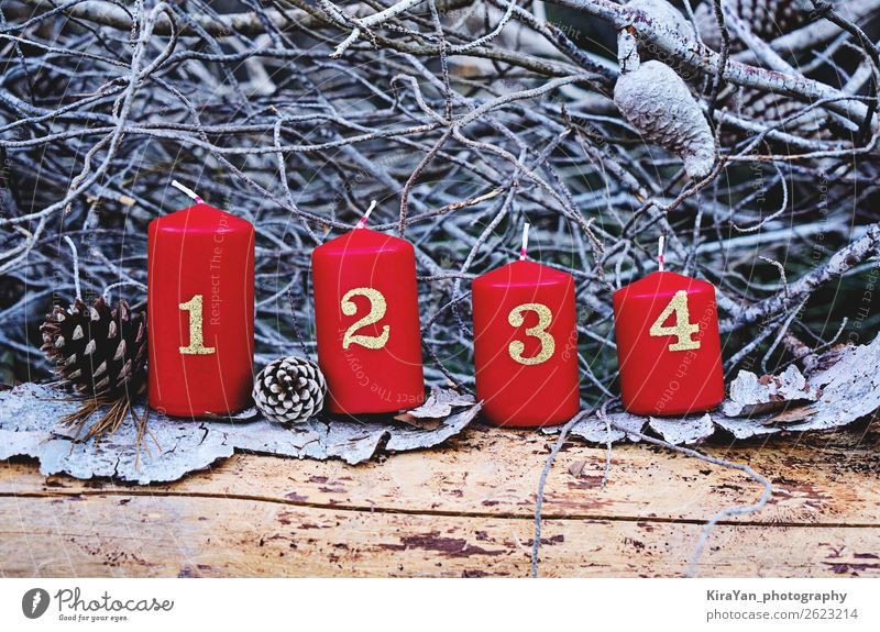 Four red advent candles with number Christmas & Advent Red Tree Winter Religion and faith Emotions Feasts & Celebrations Copy Space Decoration Hope Candle