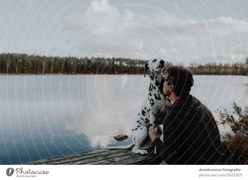 Owner and dog cuddle cuddling at the lake in Sweden Vacation & Travel Tourism Adventure Masculine Man Adults 1 Human being Nature Landscape Autumn Lakeside Dog