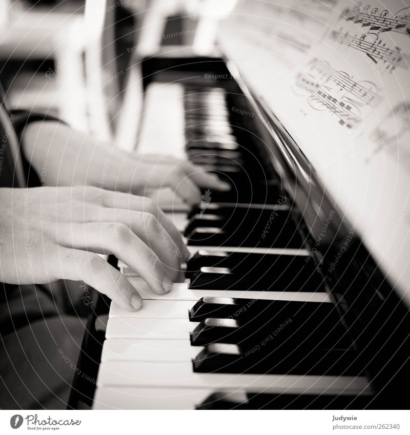 pianist Leisure and hobbies Playing Education Profession Musician Human being Masculine Young man Youth (Young adults) Hand Art Artist Concert Piano