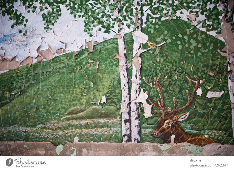 German idyll with stag Art Work of art Painting and drawing (object) Tree Tree trunk Birch tree Birch leaves Birch bark Hill Animal Wild animal Deer Deer head