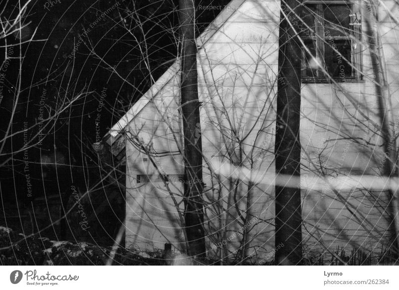 pitch dark the night House (Residential Structure) Nature Winter Tree Old Dark Creepy Gray Black White Apartment Building Black & white photo Exterior shot