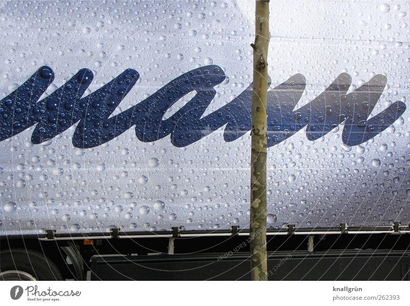 man Vehicle Truck Characters Wet Blue Silver Competition Covers (Construction) Advertising Drops of water Colour photo Exterior shot Deserted Copy Space top