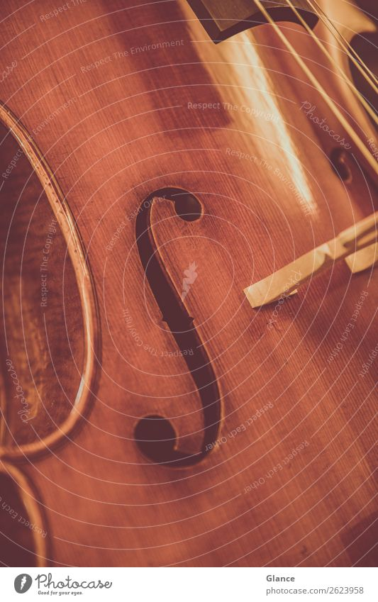 Classical music close up Elegant Style Art Music Orchestra Cello Wood Esthetic Near Brown Moody Warm-heartedness Beautiful Design Uniqueness Culture Quality