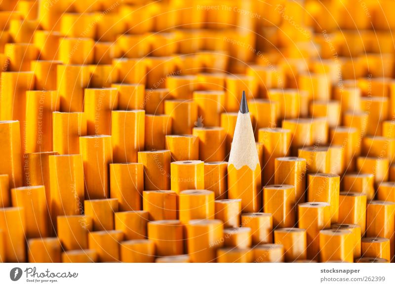 Pencils Yellow Exceptional Uniqueness Individual Still Life Difference Single Best Object photography Sharp Between Graphite Sharpened