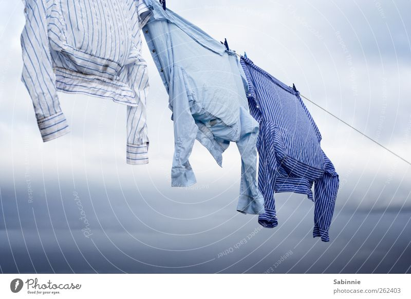 leash Sky Clouds Wind Clothing Shirt Striped Esthetic Beautiful Blue White Laundry Clothesline Clothes peg Washing Dry Easy Blow Colour photo Multicoloured