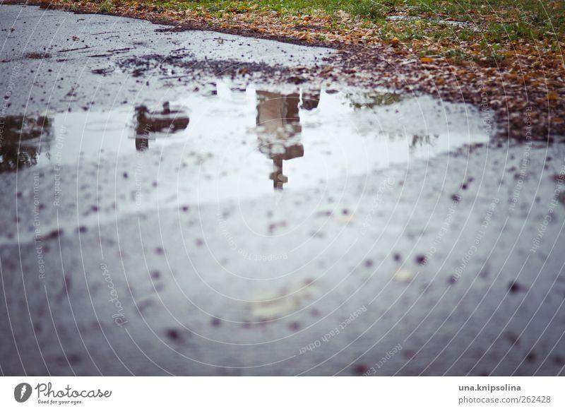 Death Dark Autumn Lanes & trails Park Rain Threat Puddle Cemetery Bad weather Tombstone
