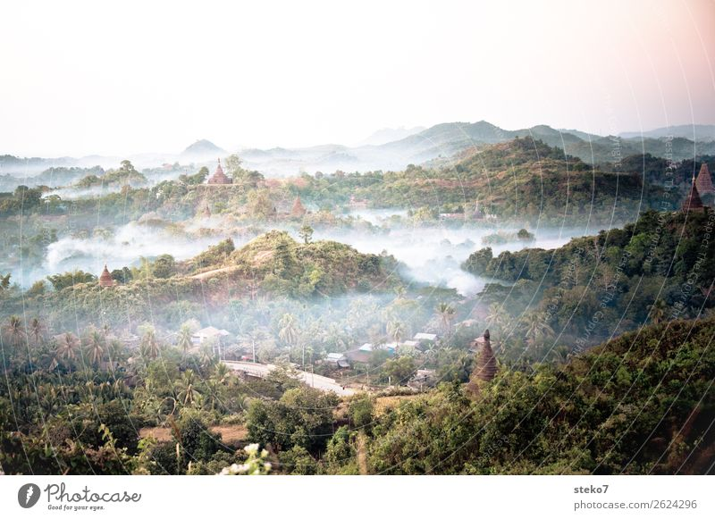 Temple of Mrauk U at dawn Fog Virgin forest Hill Myanmar Ruin Tourist Attraction Pagoda Belief Decline Past Transience Mysterious Buddhism Spirituality Mystic