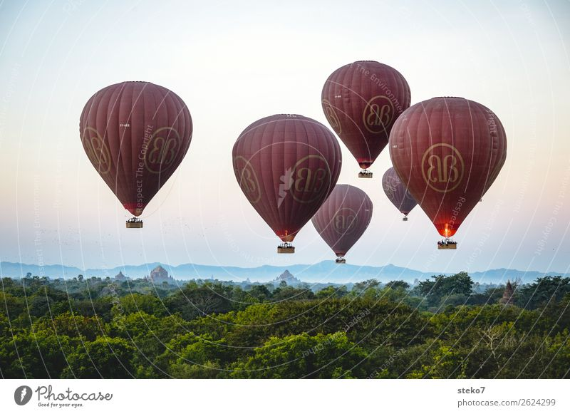 Balloons over Bagan Myanmar Tourist Attraction Hot Air Balloon Driving Flying Elegant Tall Blue Brown Green Horizon Hover deceleration Calm Weightlessness