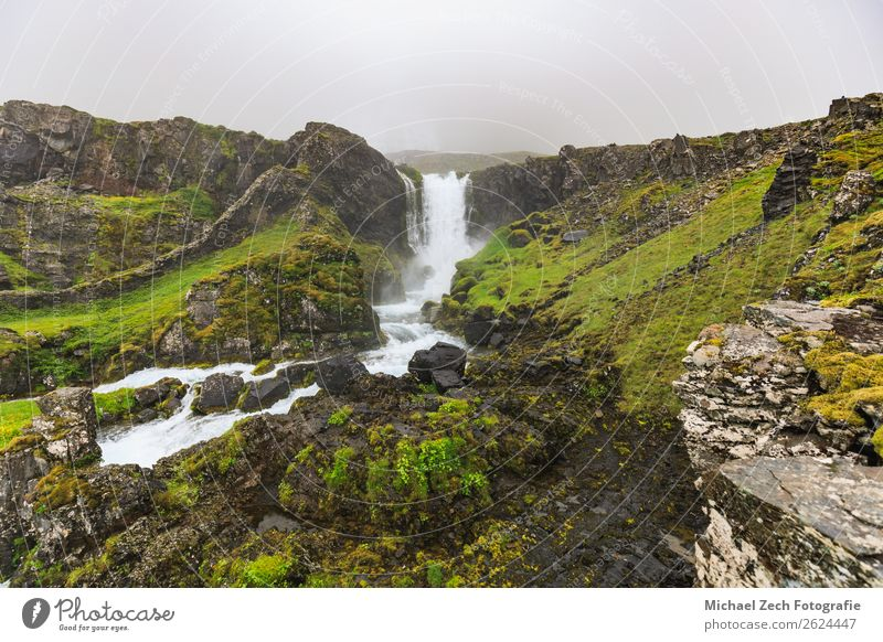 View to Dynjandi waterfall in the westfjords Beautiful Vacation & Travel Adventure Sightseeing Mountain Human being Man Adults Nature Landscape Water Autumn