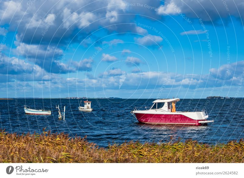 Boats on the Baltic Sea in Denmark Relaxation Vacation & Travel Tourism Nature Landscape Water Clouds Coast Harbour Architecture Tourist Attraction Watercraft