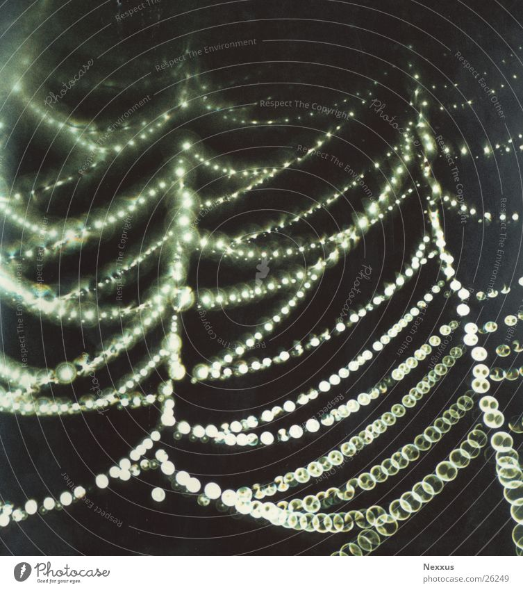 Network Spider's web Fairy lights Rain Damp mist drops