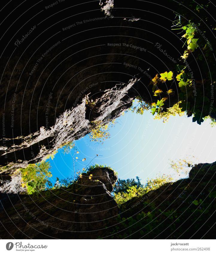 break-up Nature Plant Animal Dark Environment Mountain Grass Natural Stone Rock Wild Growth Open Vantage point Trip Stripe