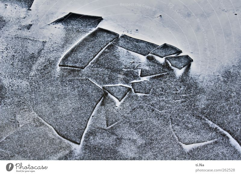 crushed ice Water Winter Ice Frost Snow Coast North Sea Freeze Dark Cold Blue Black White Power Climate Colour photo Subdued colour Exterior shot Close-up