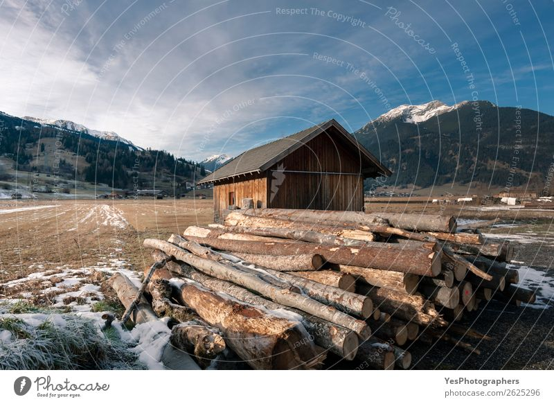 Cottage and pile of cut tree trunks in the Alps Winter Snow Mountain Industry Environment Landscape Village Hut Wood Alpine Austria Austrian barn Blue sky