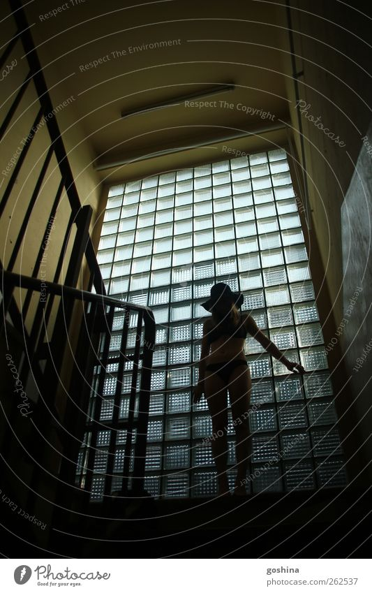 shadow play Feminine Young woman Youth (Young adults) 1 Human being 18 - 30 years Adults House (Residential Structure) Industrial plant Factory Stairs Window