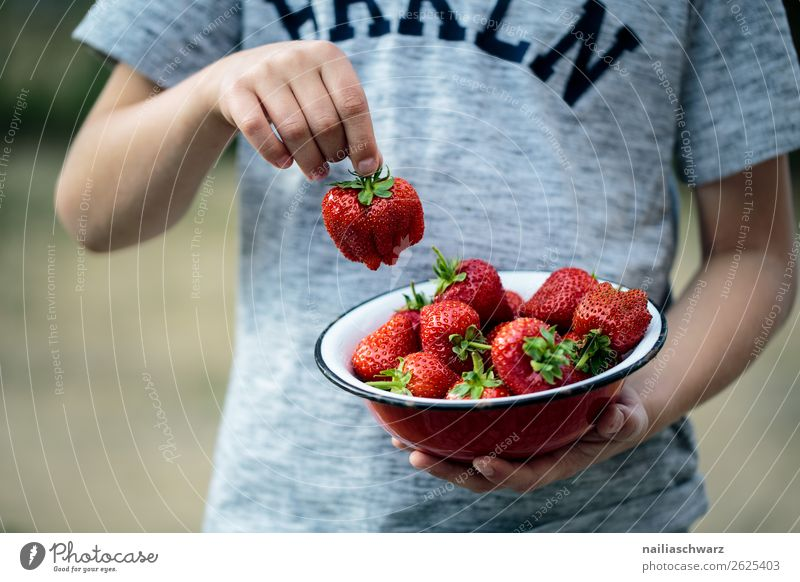 Child Human being Vacation & Travel Healthy Eating Colour Beautiful Red Hand Food Natural Happy Boy (child) Gray Fruit Nutrition