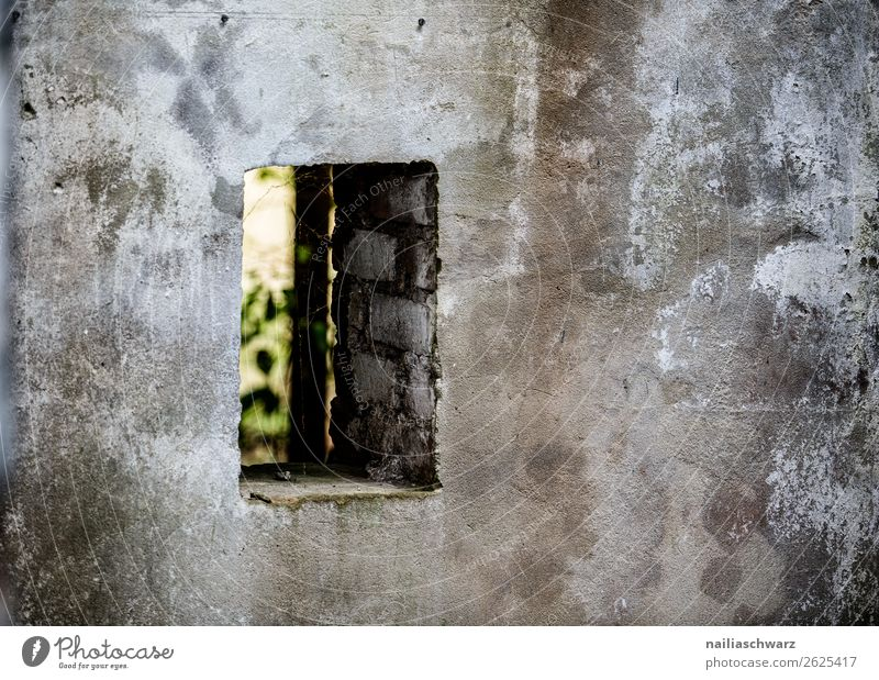Green House (Residential Structure) Window Dark Architecture Wall (building) Sadness Building Germany Wall (barrier) Gray Europe Dirty Transience Broken Change
