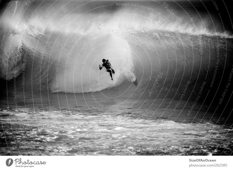 Man Water Ocean Beach Adults Sports Waves Fear Adventure Exceptional Dangerous To fall Pain Aquatics Gigantic Fiasco
