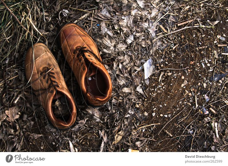 Shoes of the barefoot hunter Leather Footwear Brown Shoelace Discovery Ground Earth Old Leather shoes Calm Still Life In pairs Colour photo Exterior shot