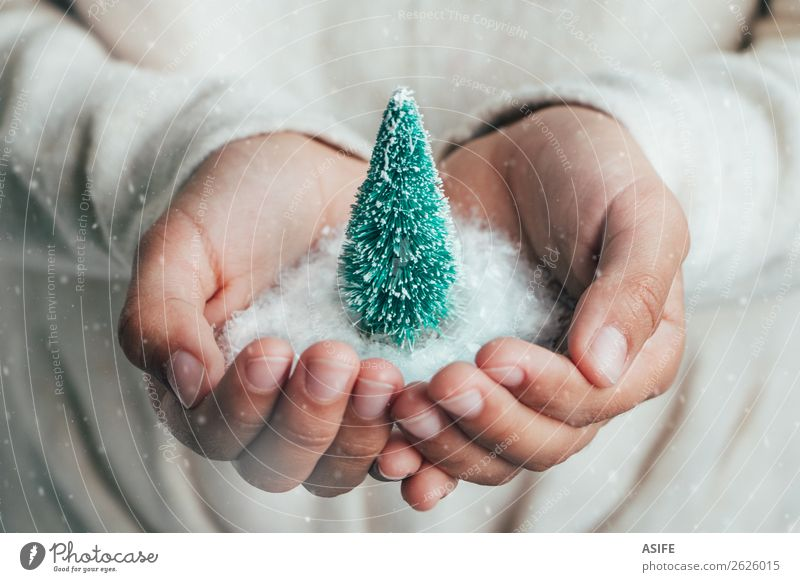 Christmas concept Joy Happy Snow Christmas & Advent Child Infancy Hand Snowfall Tree Love Dream Protection Hope Idea fir Pine Christmas tree Miniature Hold