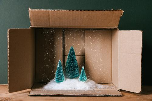 Christmas in a box Winter Snow Decoration Feasts & Celebrations Christmas & Advent Mail Snowfall Tree Pack Package Wood Funny Brown Green Surprise fir Pine