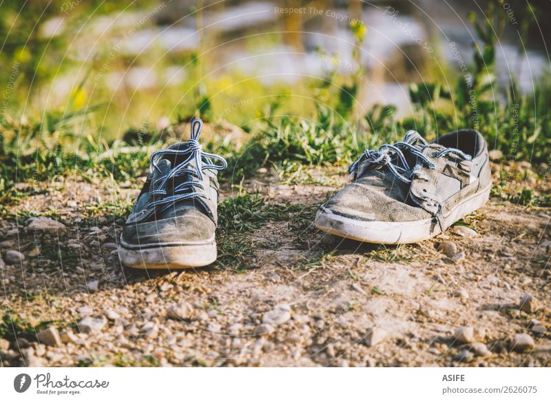 Old sneakers abandoned Summer Sun Nature Spring Autumn Grass Fashion Clothing Footwear Sneakers Stone Dirty Blue Gray broken worn Ground two suede Shoelace