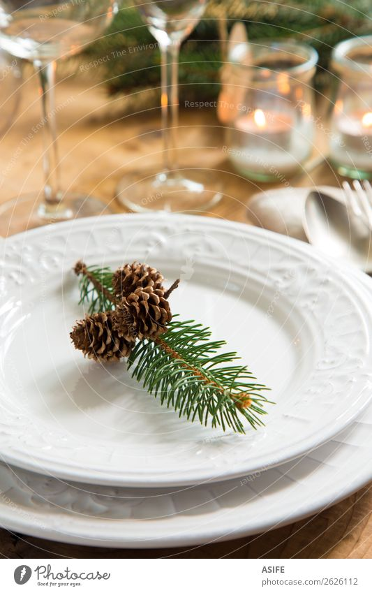 Natural ornaments for Christmas dinner Old Christmas & Advent White Dish Winter Wood Style Feasts & Celebrations Design Decoration Retro Elegant Table Places