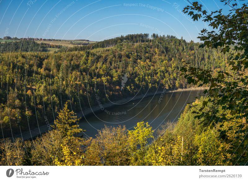 Hohenwarte Reservoir Nature Landscape Summer Autumn Tree Lake Discover Relaxation Blue Yellow Green Joie de vivre (Vitality) Hohenwartet dam Highlands