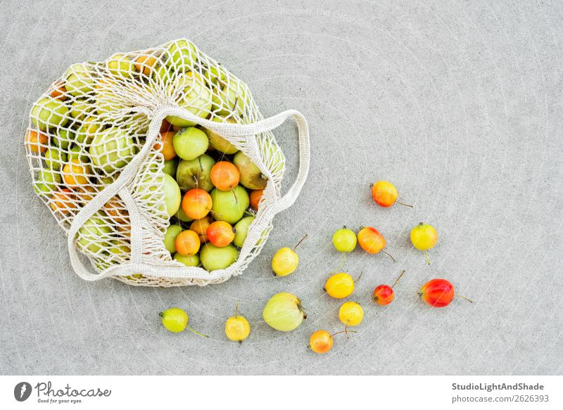 Mesh bag full of colorful apples from the garden Nature Summer Colour Green White Red Tree Food Autumn Yellow Natural Garden Gray Fruit Nutrition Bright
