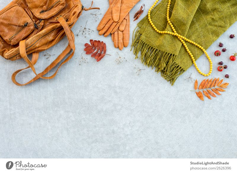 Autumn fashion flat lay in orange and green tones Nature Plant Colour Beautiful Green Red Leaf Lifestyle Warmth Yellow Natural Style Copy Space Fashion Orange
