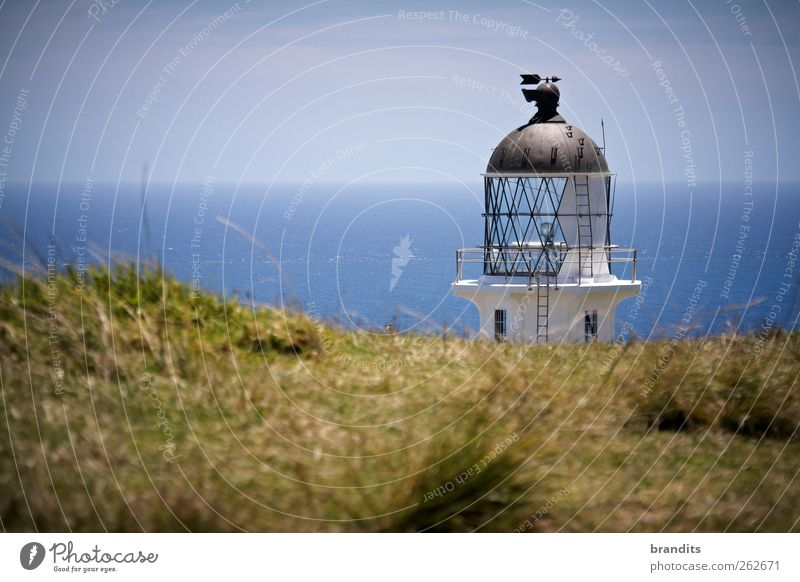 Cape Reinga New Zealand Environment Nature Landscape Water Sky Summer Beautiful weather Hill Ocean Moody Adventure Relaxation Freedom Colour photo Exterior shot