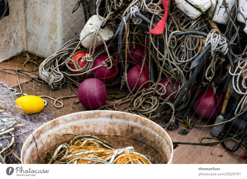 Fishing net, balls Colour photo Shadow Contrast Ocean Trip Vacation & Travel Bay Baltic Sea Nature Sky Bad weather Coast Environment Autumn Fishing village