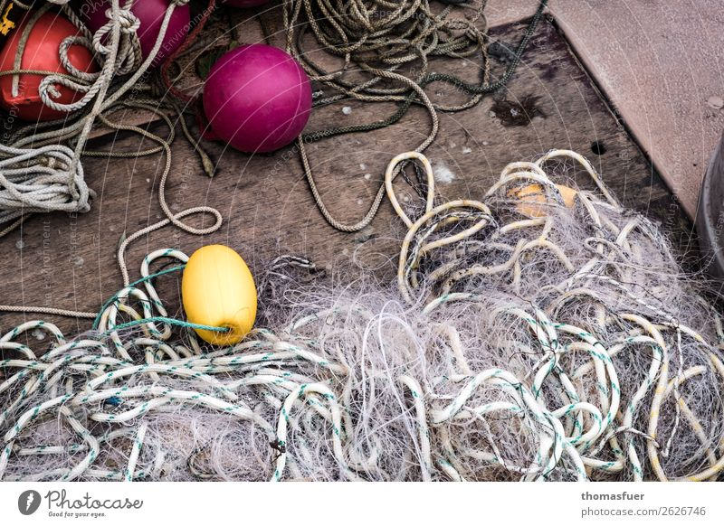 fishing net Fisherman Workplace Fishery Fishing boat Fishing net Buoy Rope Simple Yellow Violet Red Effort Expectation Idyll Sustainability Network Arrangement