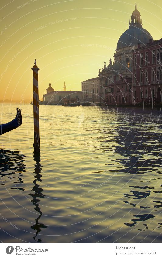 Venetian morning light Vacation & Travel Tourism Sightseeing City trip Island Lagoon Islands Water Waves River Canal Grande Venice Italy Europe Port City