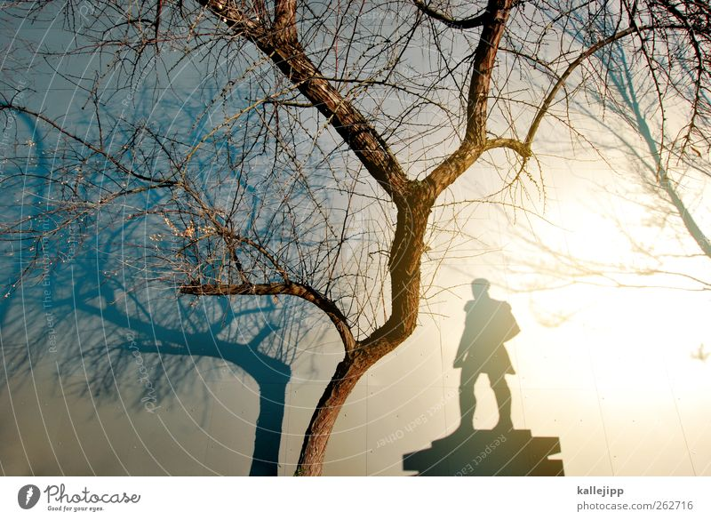 light and shadow sides Art Work of art Sculpture Environment Nature Tree Stand Statue Monument Honor Soldier Light Shadow Contrast Silhouette Reflection
