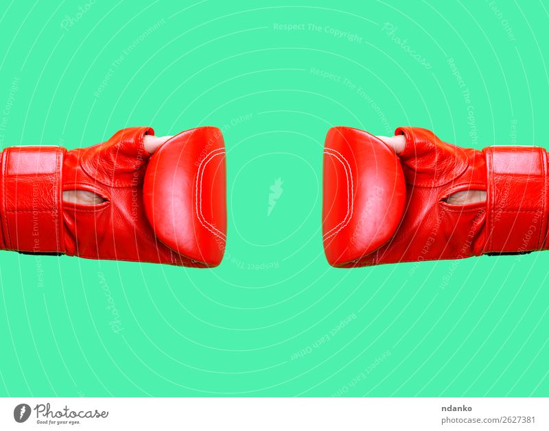 two female hands is wearing a red leather boxing glove Sports Woman Adults Hand Leather Gloves Fitness Communicate Together Green Red Protection Stress Colour