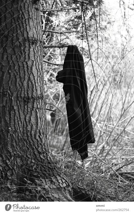 For wardrobe no liability Tree Jacket Coat Hang Exceptional Simple Black White Branch Tree bark Clothes peg Black & white photo Exterior shot Deserted
