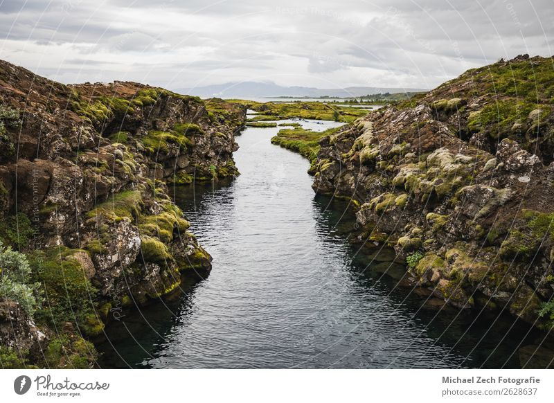 wonderful landscape view of Pingvellir national park Beautiful Vacation & Travel Sightseeing Summer Mountain Environment Nature Landscape Clouds Grass Bushes