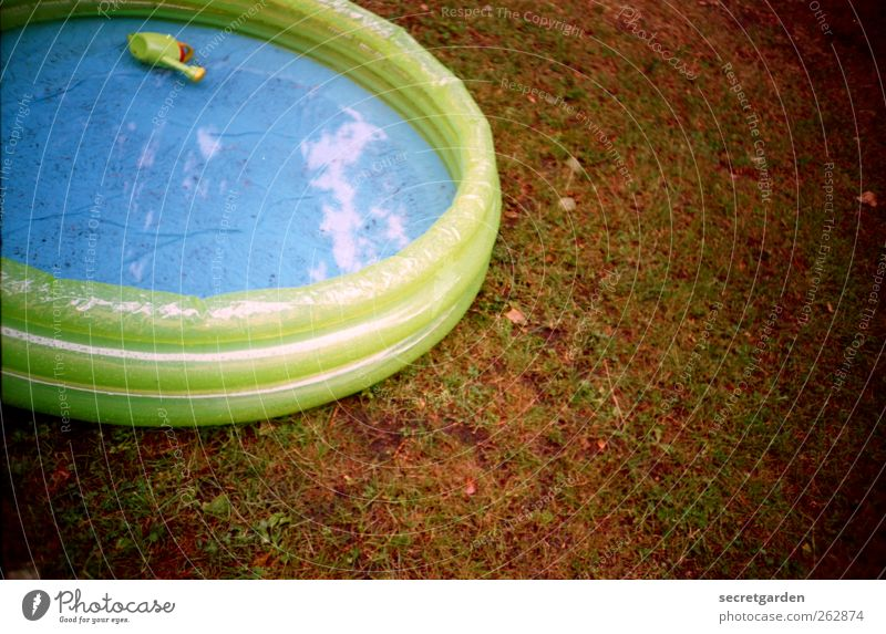 sunbathing. Grass Meadow Toys Watering can Round Blue Brown Green Paddling pool Wet Rubber Childless Inflatable Plastic Analog Colour photo Multicoloured