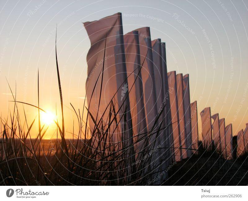 Vacation & Travel Sun Summer Beach Far-off places Landscape Grass Coast Esthetic Illuminate North Sea Cloudless sky