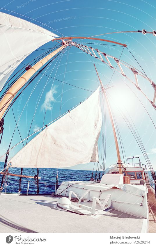 Old schooner sails against the sun. Lifestyle Vacation & Travel Trip Adventure Freedom Cruise Sun Ocean Waves Sailing Sky Wind Sailboat To enjoy Dream Blue