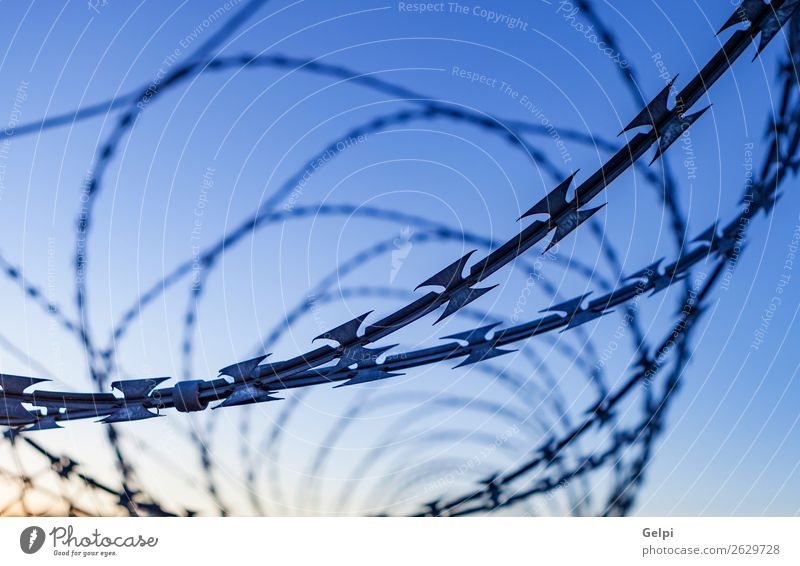 Fence with a barbed wire Sky Blue White Black Freedom Line Metal Dangerous Protection Safety Symbols and metaphors Rust Barrier Steel Safety (feeling of)