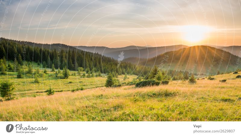 Panorama of sunset in the mountains Sky Vacation & Travel Nature Summer Plant Blue Beautiful Green Landscape White Red Sun Tree Clouds Forest Mountain