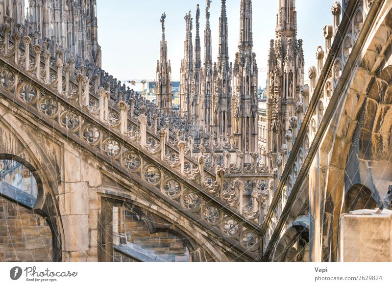 Architecture on roof of Duomo cathedral Sky Vacation & Travel Old Blue Town Beautiful White Black Religion and faith Yellow Building Art Tourism Stone Brown
