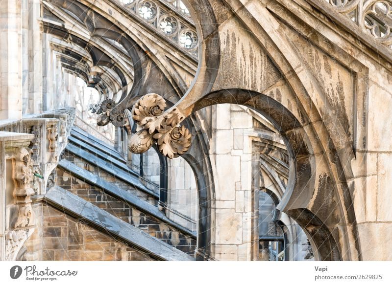 Architecture on roof of Duomo gothic cathedral Vacation & Travel Old Beautiful White Black Religion and faith Yellow Building Art Tourism Stone Gray Decoration